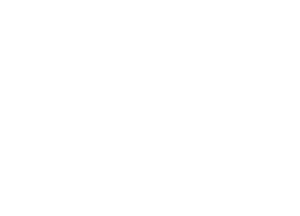 Mr green site logo